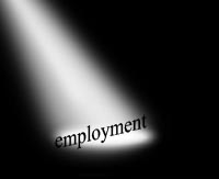 Spotlight on Employment